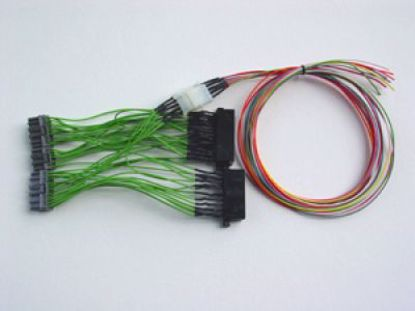 Picture of Boomslang Custom Made HondR Spec OBD0 to OBD2A Ecu Adapter Harness with sub harness