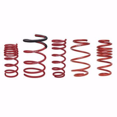 Picture of Skunk2 Lowering Springs Civic Coupe EM2 01-03 55mm F 50mm R