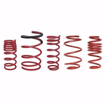 Picture of Skunk2 Lowering Springs Civic 92-95  DelSol 92-97 60mm F 55mm R