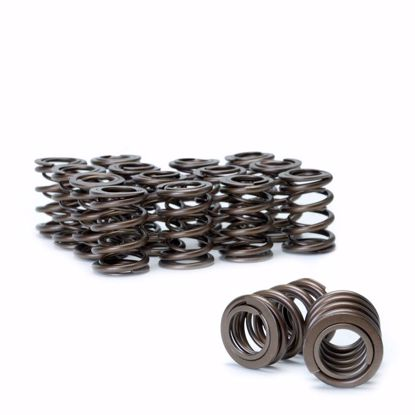 Picture of Skunk2 Alpha Series Valve Spring Set B Series DOHC VTEC
